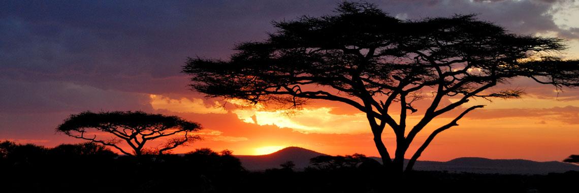 Sunset over Uganda savannah